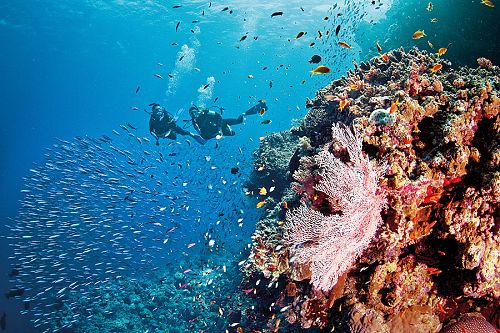 Australia Vacations - Great Barrier Reef